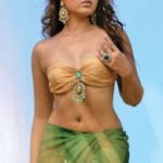 Actress Madhu Shalini Hot Navel Show Pictures