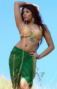 Actress Madhu Shalini Hot Navel Show Pics