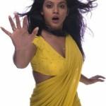 Actress Neetu Chandra Hot Saree Pictures