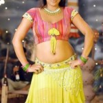 Actress Tanu Roy Hot Navel Show Photos