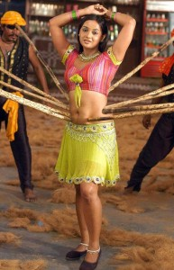 Actress Tanu Roy Hot Navel Show Photos 3