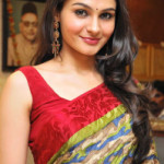 Andrea Jeremiah Latest Photos Gallery in Saree