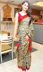 Andrea Jeremiah Latest Photos Gallery in Saree 10