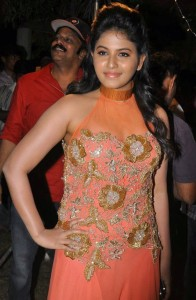 Anjali Latest Sexy Photos At Masala Movie Platinum Disc Function 5