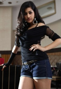 Anjali Lavania Hot Photos in Panjaa Movie
