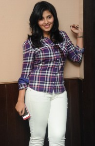 Anjali Sexy Photos At Red FM 7th Anniversary Event 4