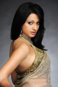 Brinda Parekh Hot Photoshoot Photos in Saree 1