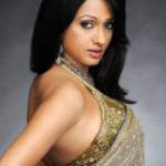 Brinda Parekh Hot Photoshoot Photos in Saree