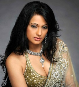 Brinda Parekh Hot Photoshoot Photos in Saree 3