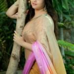 Hot Actress Namitha Latest Sexy Saree Photos Gallery