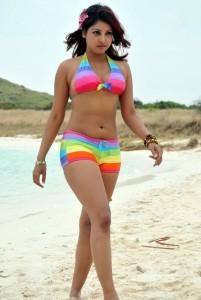 Komal Jha Hot Bikini Images