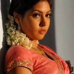 Komal Jha Latest Hot Photos Gallery in Saree
