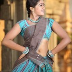Meghana Raj Hot Navel Photos in Half Saree