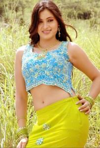 Navneet Kaur Hot Navel Show Pics