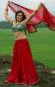 Navneet Kaur Hot Navel Show Images