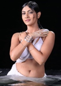Neelam Upadhyay Hot Sexy Navel Pictures From Action 3D Movie 3