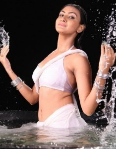Neelam Upadhyay Hot Sexy Navel Photos From Action 3D Movie 6