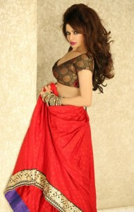 Poonam Jhawer Hot Photoshoot Pictures in Saree