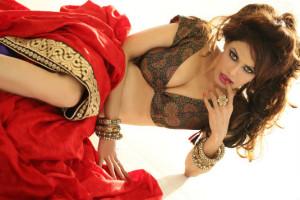 Poonam Jhawer Hot Photoshoot Images in Saree