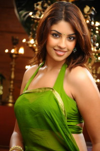 Richa Gangopadhyay Hot Photos in Saree From Mirapakay Movie 1