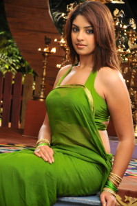 Richa Gangopadhyay Hot Photos in Saree From Mirapakay Movie 6