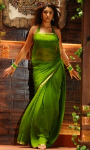 Richa Gangopadhyay Hot Photos in Saree From Mirapakay Movie 7