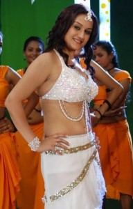 Sonia Agarwal Hot Navel Photos in Oru Nadigaiyin Vakkumoolam Movie 3