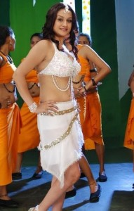 Sonia Agarwal Hot Navel Photos in Oru Nadigaiyin Vakkumoolam Movie 7