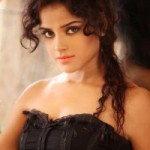 South Actress Piaa Bajpai Hot Photoshoot Photos