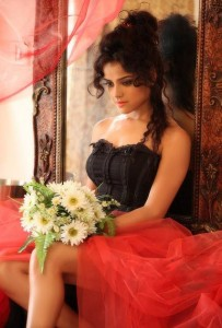 South Actress Piaa Bajpai Hot Photoshoot Pics