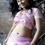 Tamil Actress Anjali Hot Navel Show Pictures