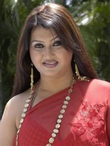 Tamil Actress Sona Hot Photos in Saree