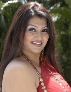 Tamil Actress Sona Hot Saree Photos 4