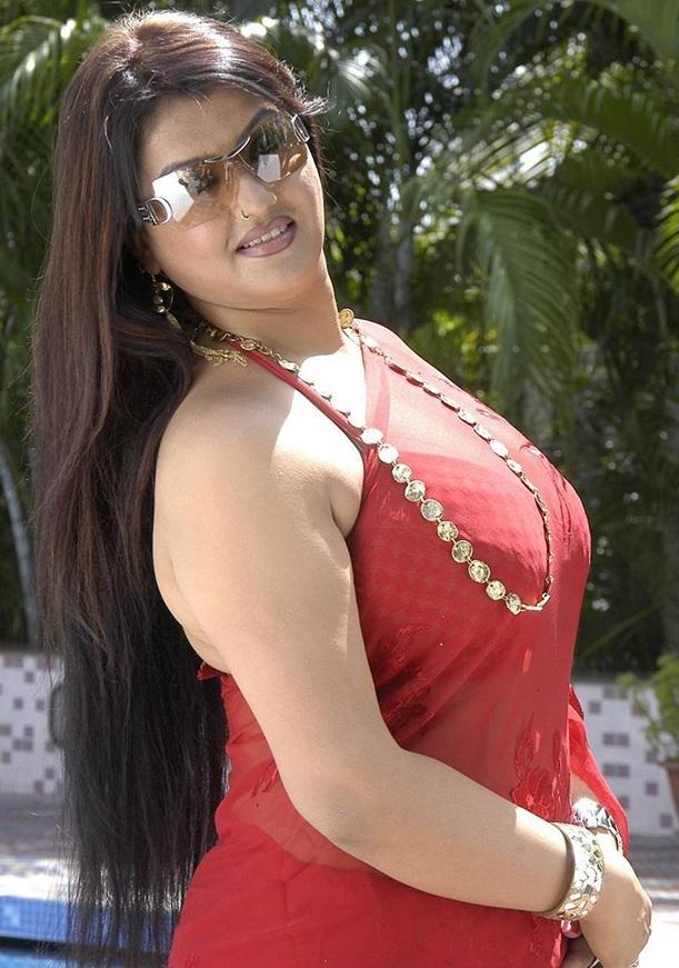 Sey Actress Sona Hot Saree S Gallery Tamil
