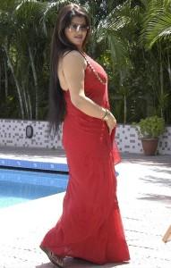 Tamil Actress Sona Hot Saree Photos 6