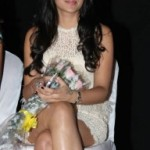 Trisha Hot Photos At Endrendrum Punnagai Movie Audio Launch