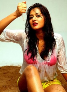 Actress Varsha Ashwathi Latest Hot Photoshoot Photos