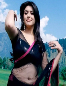 Hansika Hot Navel Show Images in Transparent Saree 1