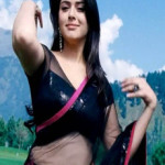 Hansika Hot Navel Show Images in Transparent Saree