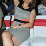 Jwala Gutta Photos At Gunde Jaari Gallanthayyinde Audio Launch