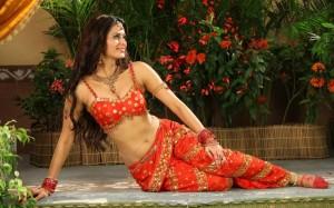 Meenakshi Dixit Hot Photos in Devaraya Movie 11