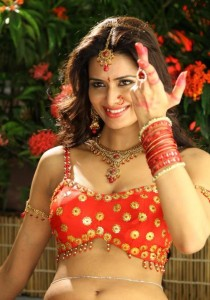 Meenakshi Dixit Hot Photos in Devaraya Movie 2