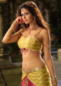 Meenakshi Dixit Hot Photos in Devaraya Movie 6