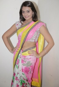 Nikitha Narayan Navel Photos in Transparent Saree 1
