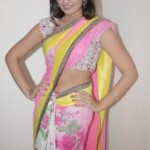Nikitha Narayan Navel Photos in Transparent Saree