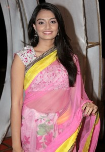 Nikitha Narayan Navel Photos in Transparent Saree 3