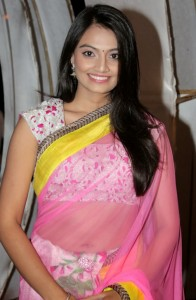 Nikitha Narayan Navel Photos in Transparent Saree 4
