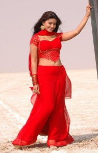 Sneha Hot Navel Photos in Mondi Mogudu Movie 1