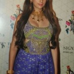 Aditi Rao Hydari Pics At Retail Jeweller India Trendsetters 2014 Show