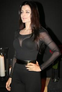 Ameesha Patel At Deepika Padukone Success Bash Party Photos 4